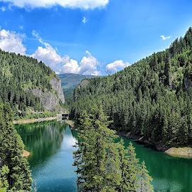 Cheile Tătarului by Gabriel-Cristian Stancu - Landscapes Travel ( water, mountains, sky, forest, bucegi )