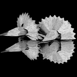 Pencils by Asif Bora - Black & White Objects & Still Life