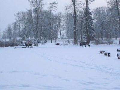 Зима в районе Вильнюса Кайренай