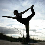 Vinyasa Flow Yoga 1 Icon