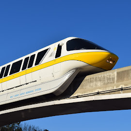 Walt Disney World Monorail by Keith Heinly - Transportation Trains ( monorail, florida, train, orlando, disney )