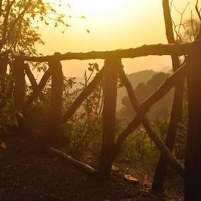 Dusk @Shoghi by Tridibesh Indu - Landscapes Sunsets & Sunrises ( nature, sunset, landscape, dusk )