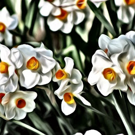 White Petals by Roxanne Dean - Digital Art Things ( painted, nature, still life, flowers, garden, absract )