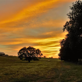 Central Kentucky Sunset. by Jim Dawson - Novices Only Landscapes ( field, barn, sunset, trees, cattle_farm )