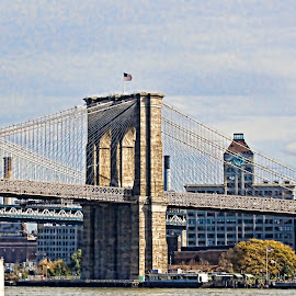 Brooklyn Bridge In the Fall by Sandy Friedkin - Buildings & Architecture Bridges & Suspended Structures ( fall, east river, nyc, bridge )