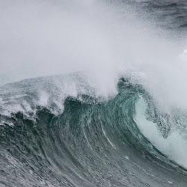 by Sverre Sebjørnsen - Nature Up Close Water