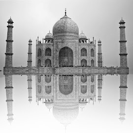 Taj Mahal by Labeeb Kareem - Black & White Buildings & Architecture (  )