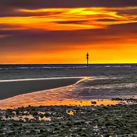 Honeymoon Island Golden Hour by Pat Lasley - Landscapes Beaches ( beaches, florida, sunset, landscape, honeymoon island )