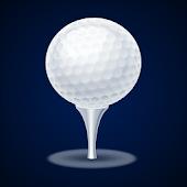 Free Night Golf Tournament APK for Windows 8