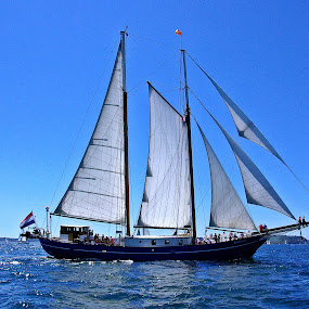 Old beauty on the sea by Ciprian Apetrei - Transportation Boats ( sunny, sails, ocean, brittany, boat,  )