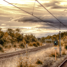 The Train Tracks by Adam Lang - Landscapes Travel ( clouds, train tracks, gateshead, trees, sunrise )