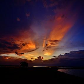 Between Tietê, Paraná rivers - Itapura SP Brazil  by Marcello Toldi - Landscapes Sunsets & Sunrises