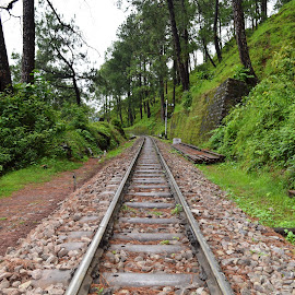 Tracks  by Amit Arora - Transportation Railway Tracks ( hills, tracks, pair )