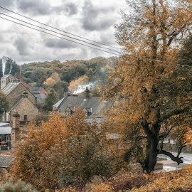 Beamish Pit Village by Adam Lang - City,  Street & Park  City Parks ( beamish, pit village, autumn, trees, cottages )