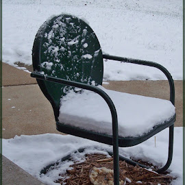 Snowy Tulip Chair by Sandy Stevens Krassinger - Artistic Objects Furniture ( chair, snow, nature up close, artistic object, furniture,  )