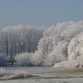 Wintermorning by Nico Kranenburg - Landscapes Weather ( water, winter, white, ripe,  )
