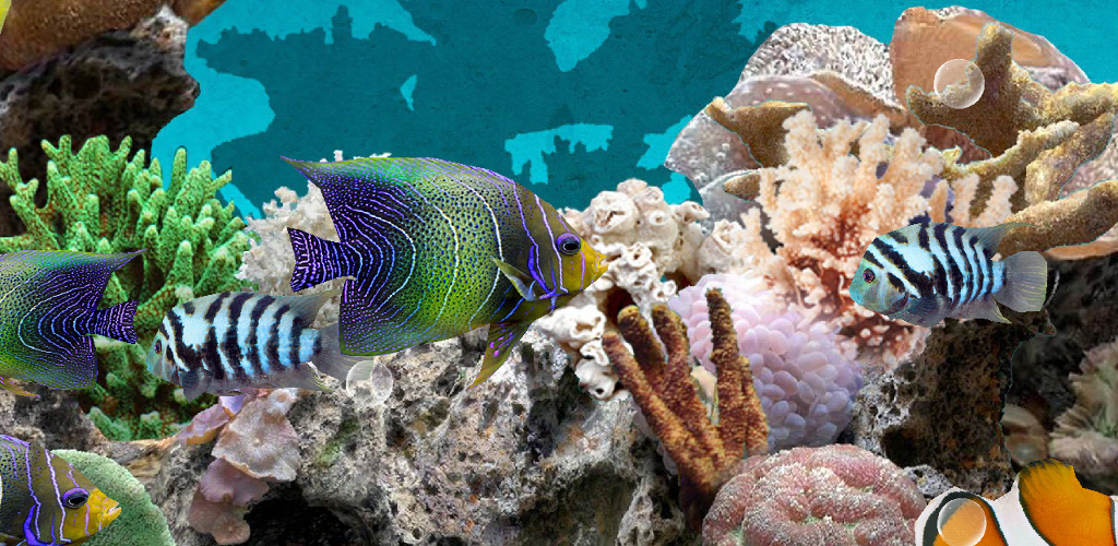 Coral Fish 3D Live Wallpaper 102 Apk Download