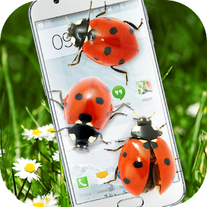 Download Ladybug in Phone Funny joke For PC Windows and Mac
