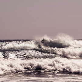 by Amy Lorkin - Sports & Fitness Surfing ( surfing, nature, sports, ocean, surf )