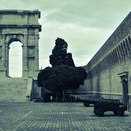 Roman arch by Simone Re - Buildings & Architecture Statues & Monuments ( history, old, arch, roman, italy )