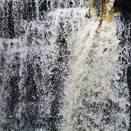 dells mill by Jon Radtke - Nature Up Close Water ( dells mill )