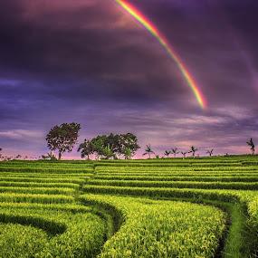 miss you 1 by Rahmad Himawan - Landscapes Cloud Formations ( clouds, mountain, fine art, landscape, field, sky, bengkulu, sunset, asia, landscape photography, sunrise, rainbow, fields )