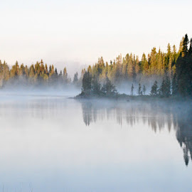 Misty Morn  by Debbie Squier-Bernst - Landscapes Weather