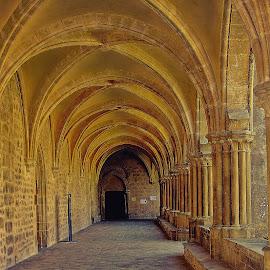Cloitre de l'abbaye royale de Royaumont by Gérard CHATENET - Buildings & Architecture Public & Historical