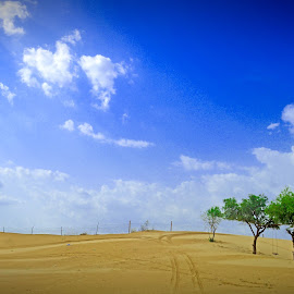 by Biplab Jayapuria - Landscapes Deserts
