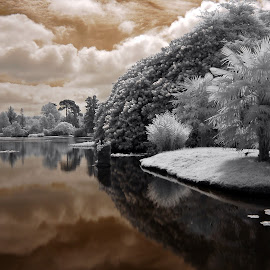 lAKE INFRARED by Mark Bond - Landscapes Cloud Formations ( reflection, sky, sussex, infrared, lak, brown, lake )