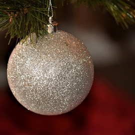 Christmas Ornament  by Priscilla Renda McDaniel - Public Holidays Christmas ( ball, tree, silver, ornament, christmas, Christmas, card, Santa, Santa Claus, holiday, holidays, season, Advent )