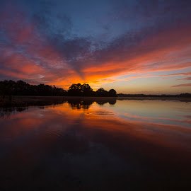 Sunrise Florida by Lynn Kohut - Landscapes Sunsets & Sunrises ( clouds, waterscape, reflections, horizon, lake, sunrise, early morning )