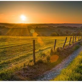 by David Ferris - Landscapes Sunsets & Sunrises ( countryside, ireland, sunset, lanes, fields )