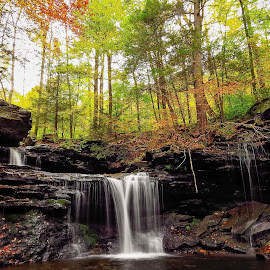 Ricketts Glen State Park by Tony Bendele - Landscapes Travel