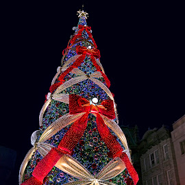 Xmas Tree USJ by Kwoh LK - Public Holidays Christmas ( universial studio japan )