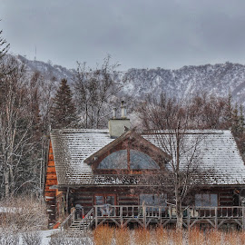 A Home In Homer by Patricia Phillips - Buildings & Architecture Homes ( alaska homes hillside winter snowing, homer )