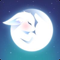 STELLAR FOX For PC