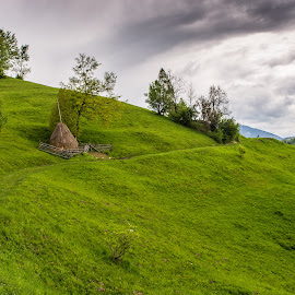 Rural by Bogdan Vasilca - Landscapes Travel ( clouds, countryside, mountain, silence, romania, rural, fields, brasov )