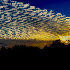 Golden Cloud by Lian van den Heever - Landscapes Weather ( sky, cape, blue, sunset, white, south, cloud, town, gold )