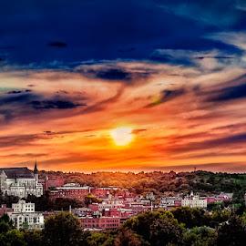 untitled by Dragan Milovanovic - City,  Street & Park  Vistas