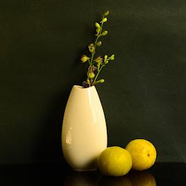 Still Life  by Prasanta Das - Artistic Objects Still Life ( porcelain, still life, gooseberries )