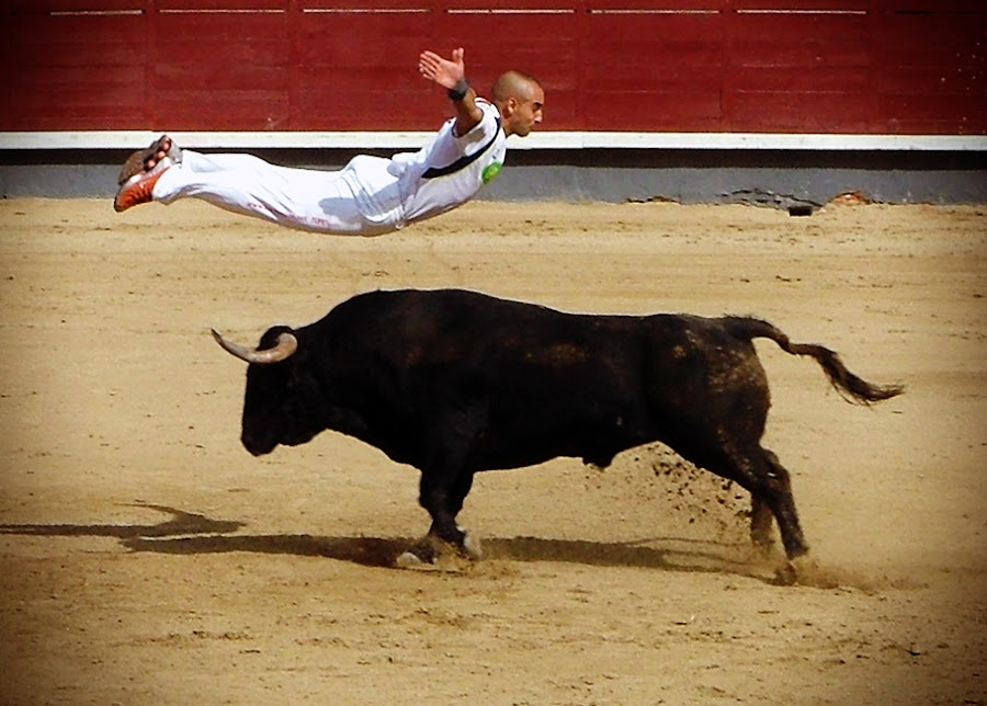 BullMatrix by Valentyn Kolesnyk - News & Events World Events ( rekorte, boldness, courage, bull, agility )