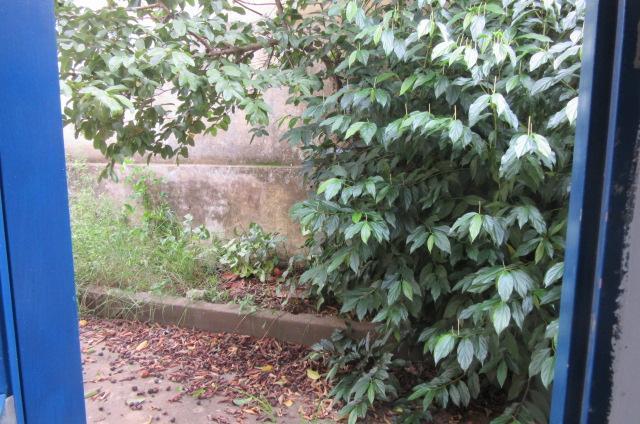 Casa Jardim Conceição (Sousas) | D.Lange Imóveis em Campinas