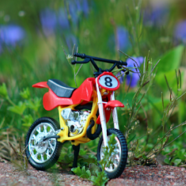 by Dipali S - Artistic Objects Toys ( field, bike, toy, play, moped )