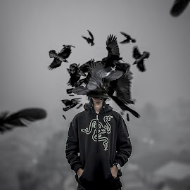 Insane by Dapi Nugraha - Digital Art People ( mystery, art, digital art, crow, lonely, birds )