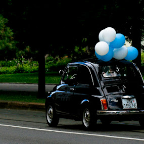 Let The Marriage Roll by Tigi Borg - Wedding Reception ( car, park, street, tigiphoto, white, transportation, balloons, people, love, nature, color, blue, wedding, outdoor, 2012, bride, groom )