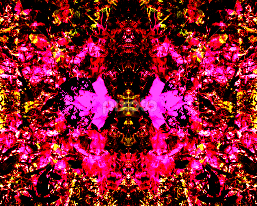 pink on red by Edward Gold - Digital Art Abstract ( red, gold, abstract art, pinks, digital art,  )