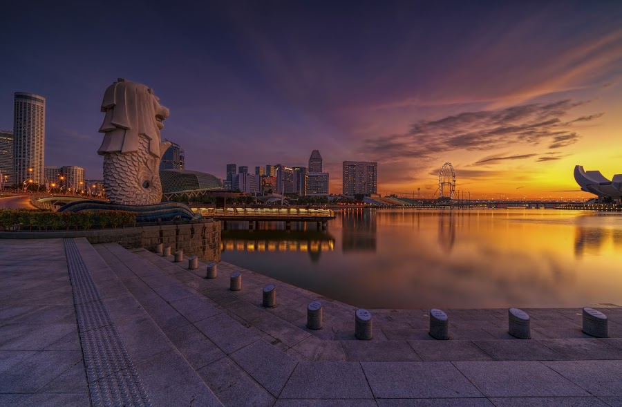 by Gordon Koh - City,  Street & Park  City Parks ( singapore, sunrise, reflection, modern, urban, city, asia, city park, fullerton, clouds, building, merlion )