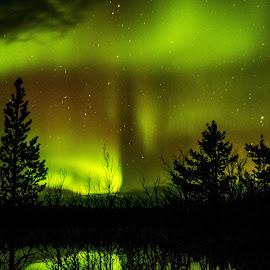 Aurora by Ricky Friskilæ - Landscapes Weather