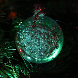 by Caroline Dadley - Public Holidays Christmas (  )
